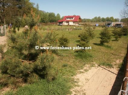 ferienhaus polen - ferienhaus in warnowo an der ostsee